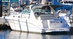 Sea Ray Sundancer 1995