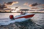 Wellcraft 222 Fisherman 2017