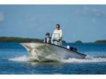 2017 Boston Whaler 170