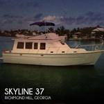 Skyline 1979