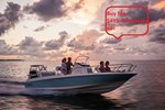 Boston Whaler 240 Dauntless 2017