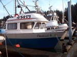 1981 Commercial Fishing Boat - Longliner Seiner