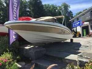 Sea Ray SPX 210 2017