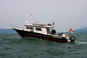 KingFisher 3425 Offshore GFX 2019