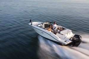 Sea Ray 19 SPX OUTBOARD 2017
