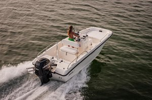 Boston Whaler 170 Dauntless 2017