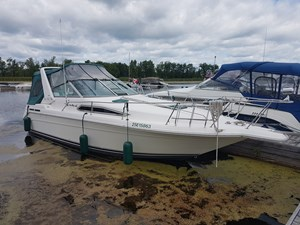 Sea Ray Sundancer 290 1992