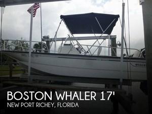 Boston Whaler 2012