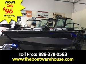 Lowe Boats FS 1610 Merc 115HP Trailer Fish Finder Stereo 2018