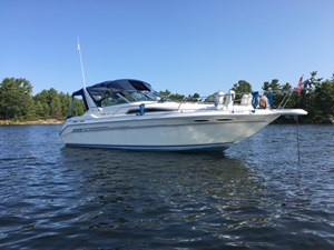Sea Ray 300 Sundancer 1993
