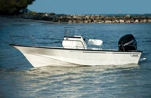 Boston Whaler 190 MONTAUK 150XL EFI 4S 2019