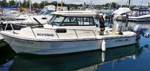 2002 Arima Sea Ranger 21 Hardtop