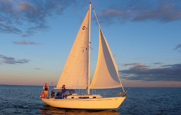 1982 Douglas 31 Sloop Photo 1 of 17