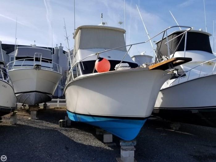 1984 Ocean Yachts 38 Super Sport Photo 11 sur 20