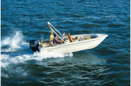 2019 Scout 175 Sport Dorado Photo 23 of 30