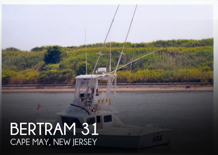 1969 Bertram 31 Photo 1 sur 20