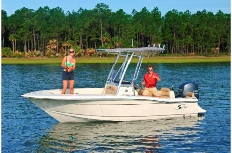 2019 Scout 195 Sport Fish Photo 13 of 23