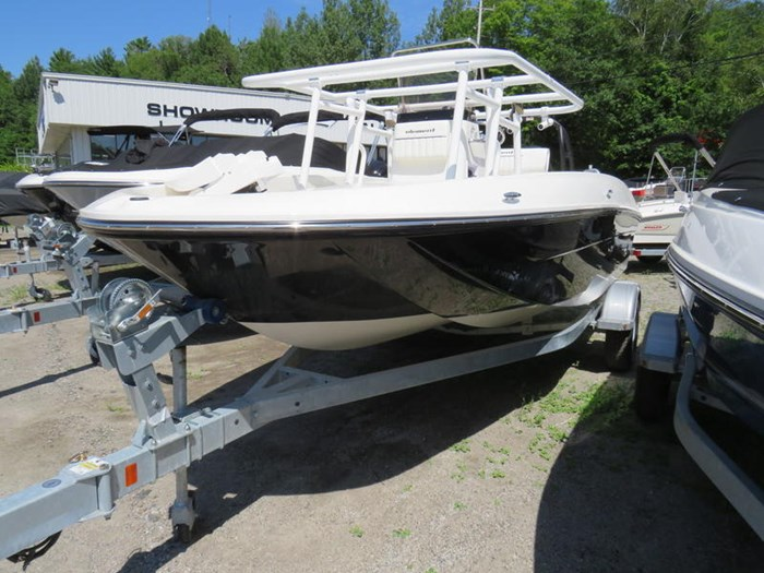 2019 Bayliner F18 Photo 4 sur 6