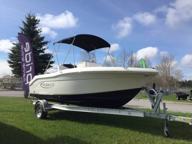 2019 ROBALO R180 Photo 12 of 13