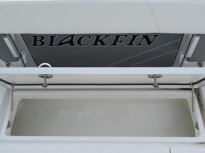 2018 Blackfin 242CC Photo 16 of 16
