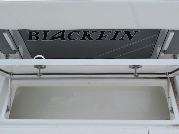 2018 Blackfin 242CC Photo 16 sur 16