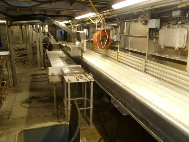 1994 Sylte Shipyard Freezer Dragger Photo 76 sur 100