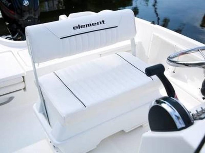2020 Bayliner Element F18 Photo 4 sur 7