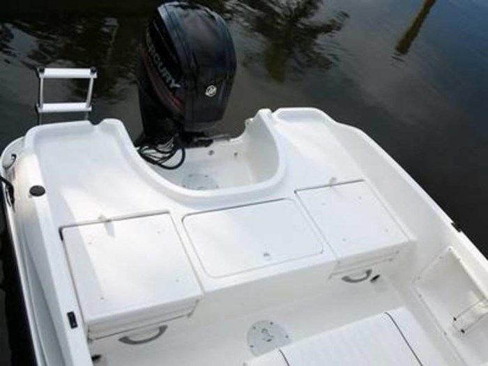 2020 Bayliner Element F18 Photo 7 sur 7