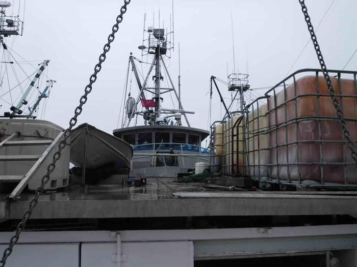 1974 Gooldrup Offshore Tuna Boat Photo 8 of 79