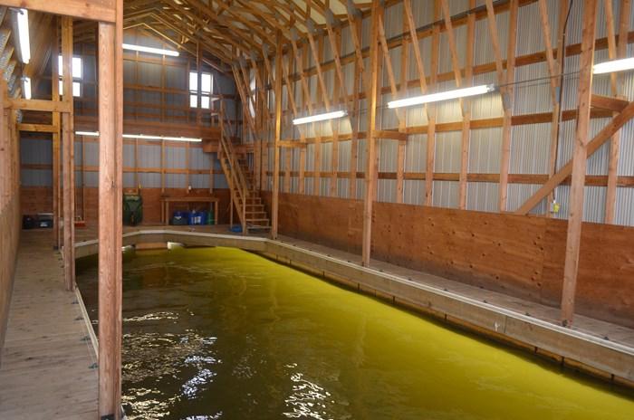 2008 Custom Boathouse Photo 4 sur 29