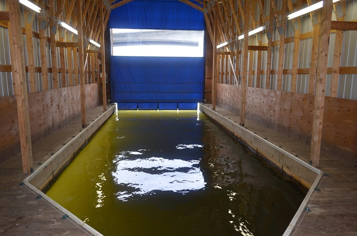 2008 Custom Boathouse Photo 3 sur 29