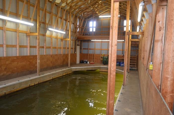 2008 Custom Boathouse Photo 1 sur 29