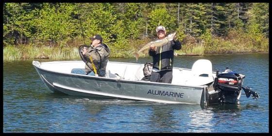 2020 Alumarine 20' Yukon Fisherman Photo 8 sur 11