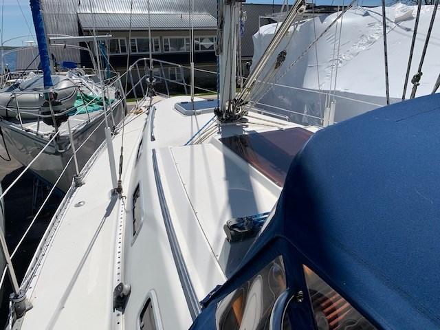 1990 CS Yachts 34 Photo 10 of 43