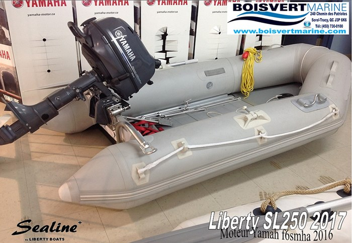 2017 Liberty Boats SL250 Photo 1 of 6