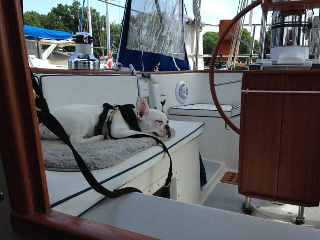 1985 Aloha Yachts Mark i Photo 8 of 40