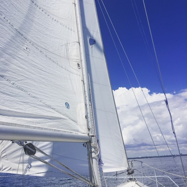 1979 CS Yachts 36 Traditional Photo 28 sur 28