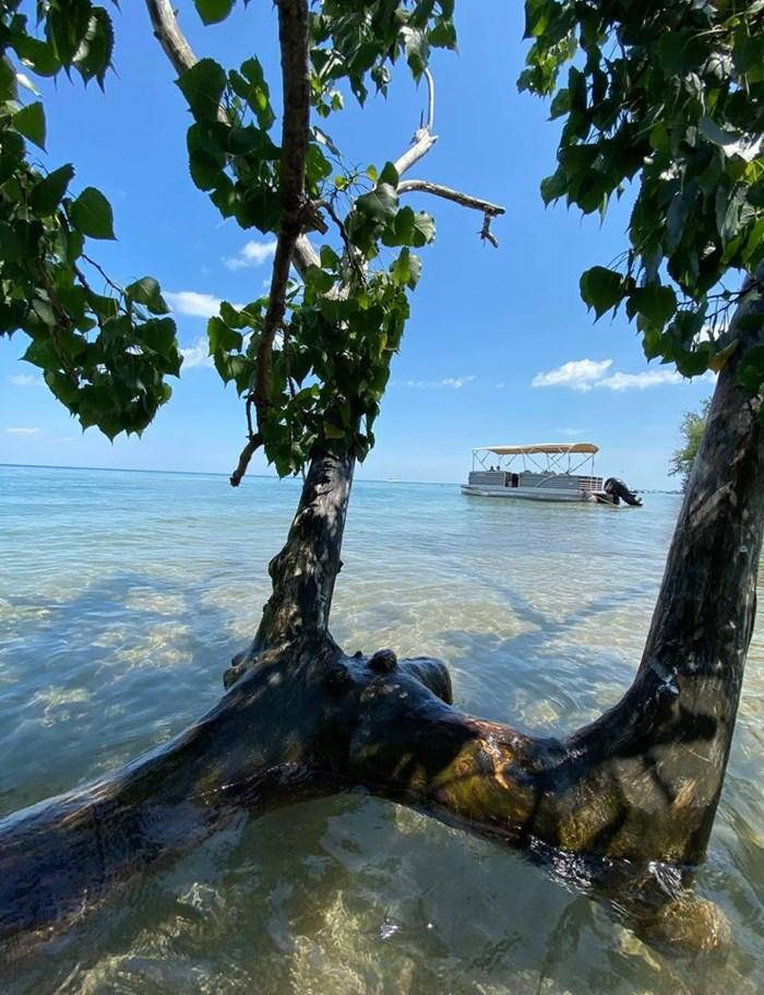 2015 Cypress Cay Cozumel 240 DLDH Photo 10 of 10