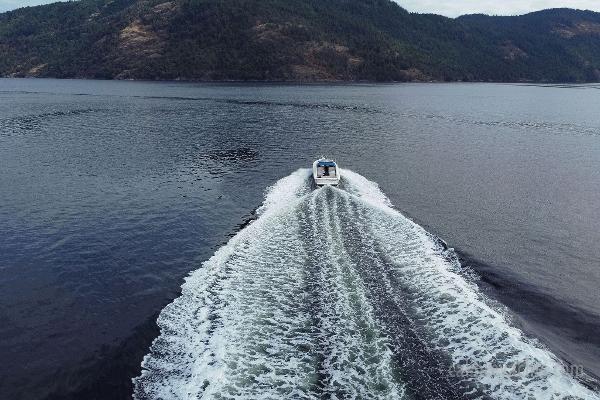 1998 Sea Ray Express Cruiser Photo 21 sur 71