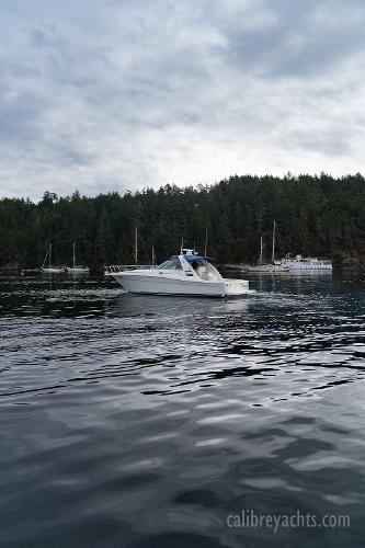 1998 Sea Ray Express Cruiser Photo 28 sur 71